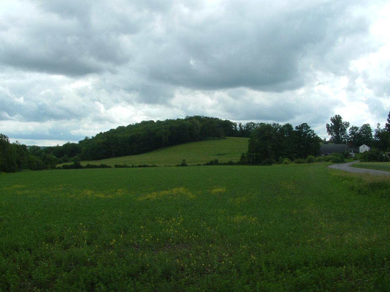 Petreikis Farm
