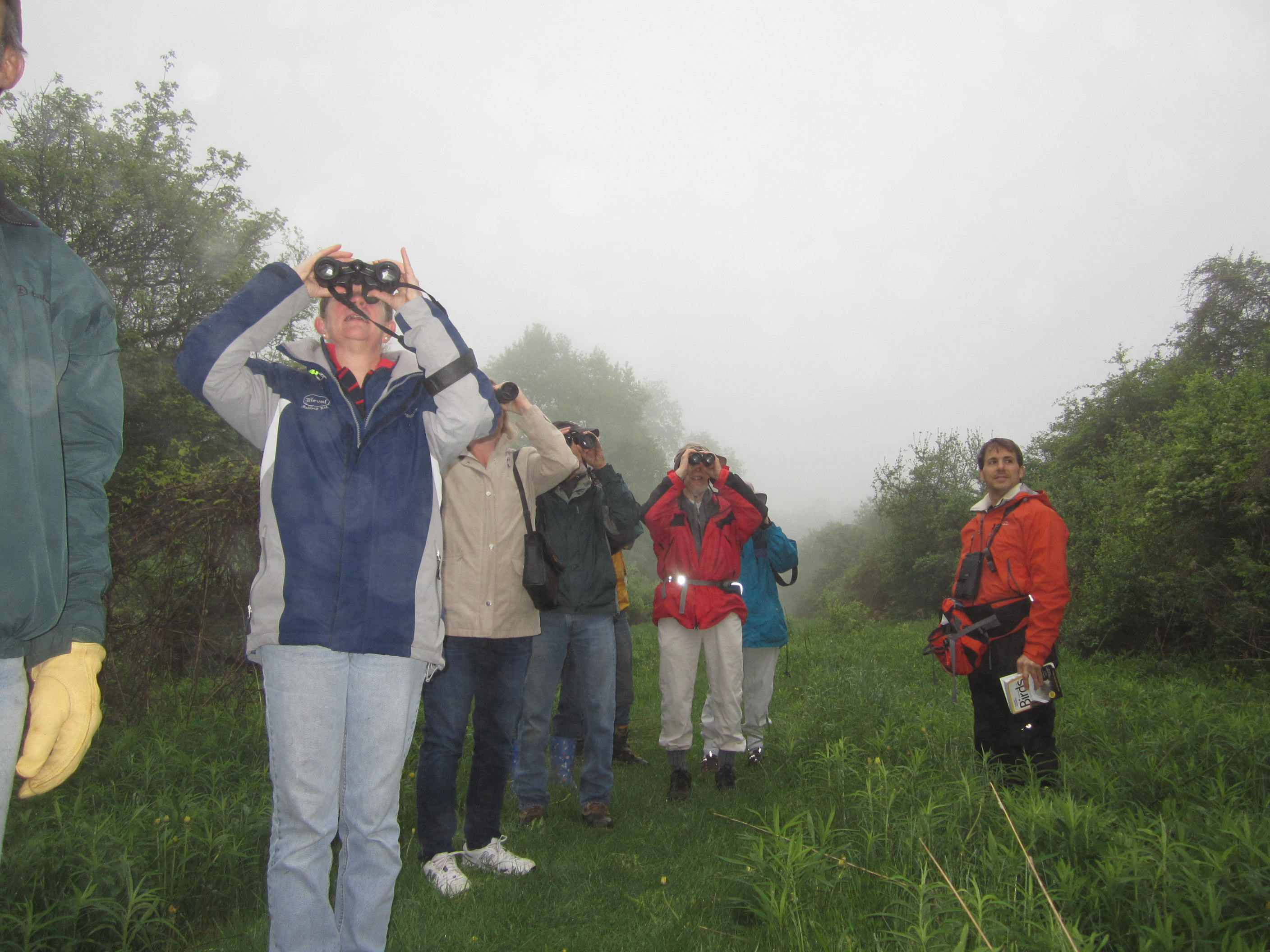 Birders at Fairchild Hill